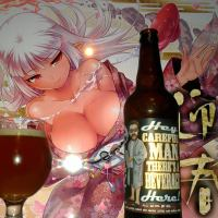 Hey, Careful Man, There's A Beverage Here by Pipeworks brewing