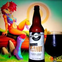 d-Unkle Peanut by Garage Brewing